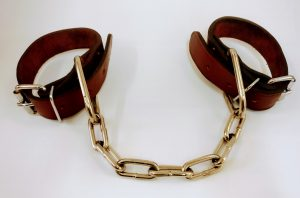 Shackle for calving